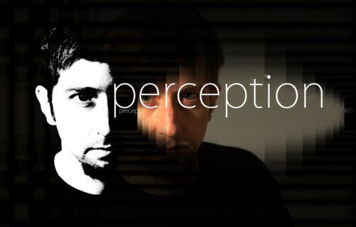 Perception and manipulation